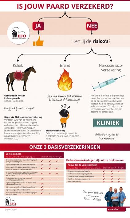 infographic Rollup EFO Paardenverzekering